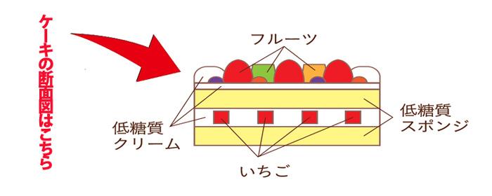 フリュティエ 低糖質フルーツデコレーション2